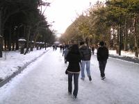 20090104__4