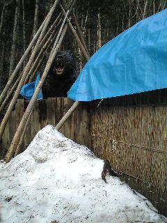 三毛別熊事件跡